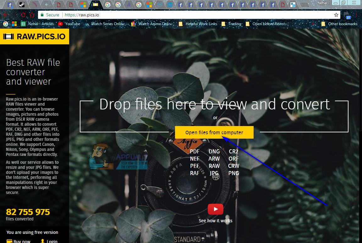 best raw file to jpg converter
